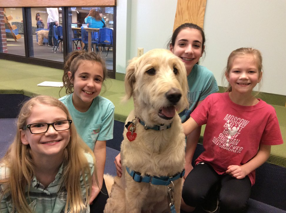 LEER: Alliance Therapy Dogs - Always well received at the library!