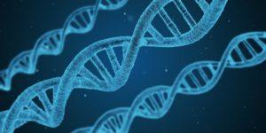 3D Rendering of DNA