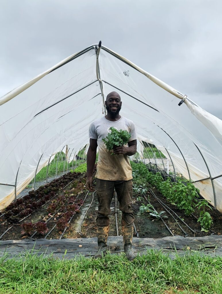 Man holding green plants, standing in front of a greenhouse made of vinyl sheeting with tilled earth and plants growing.