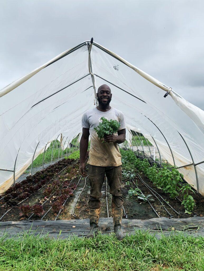 Hombre sosteniendo plantas verdes, de pie frente a un invernadero hecho con una cubierta de vinilo con tierra cultivada y plantas en crecimiento.